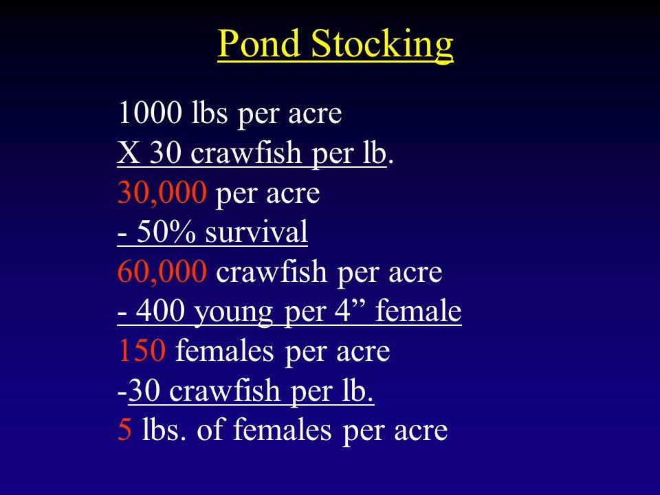 """Pond Stocking 1000 lbs per acre X 30 crawfish per lb. 30,000 per acre - 50% survival 60,000 crawfish per acre - 400 young per 4"""" female 150 females pe"""