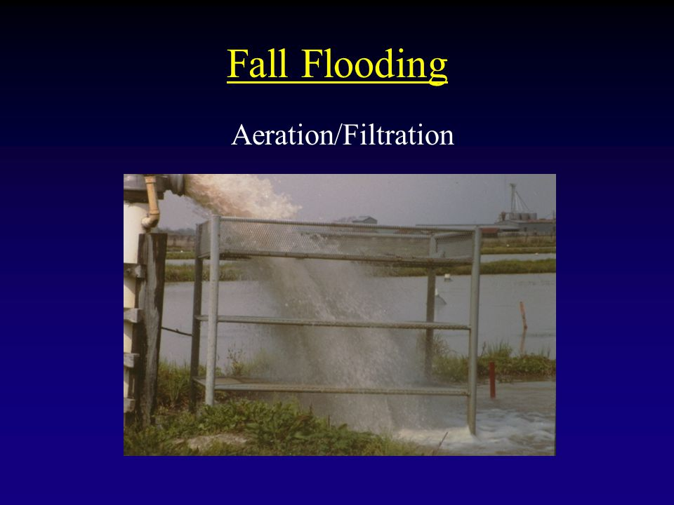 Fall Flooding Aeration/Filtration