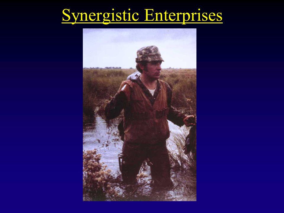 Synergistic Enterprises