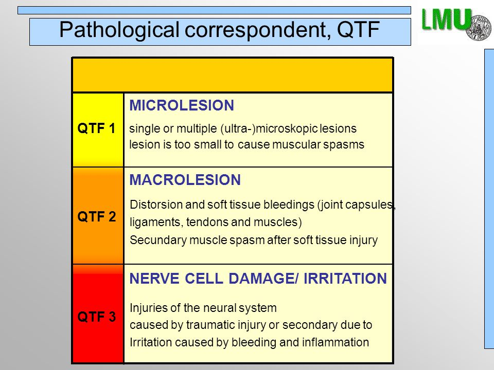QTF degree 1 and 2 muscular damage muscular sprain/tear healing within days/weeks leaves scar, but no permanent damage source: Foreman, Croft, Whiplash Injuries Williams & Wilkins, Baltimore, 1995