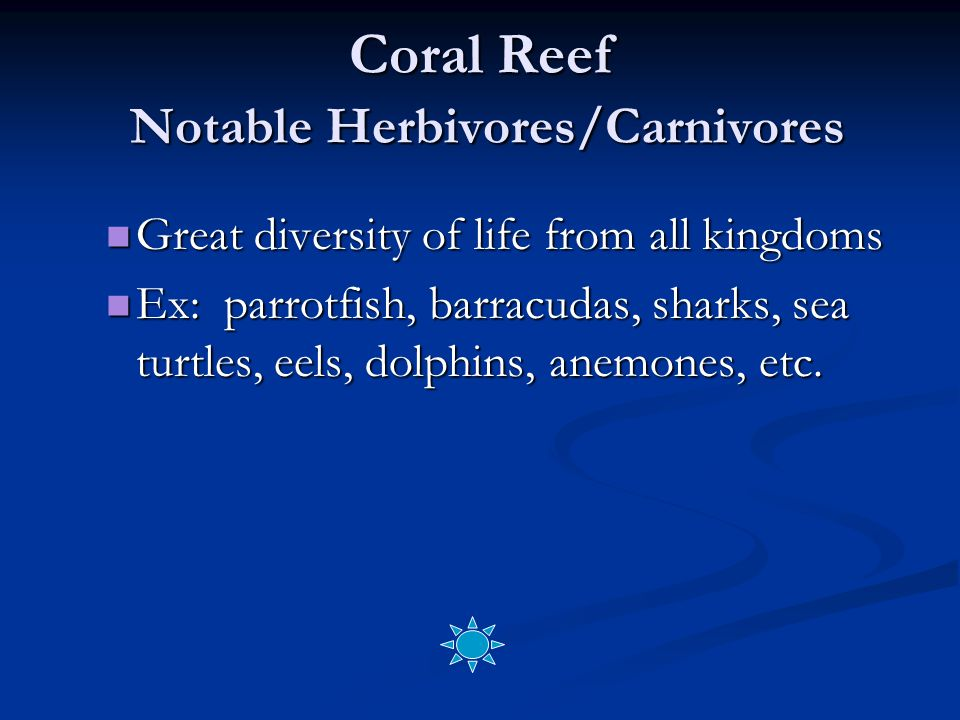 Coral Reef Notable Herbivores/Carnivores Great diversity of life from all kingdoms Great diversity of life from all kingdoms Ex: parrotfish, barracudas, sharks, sea turtles, eels, dolphins, anemones, etc.