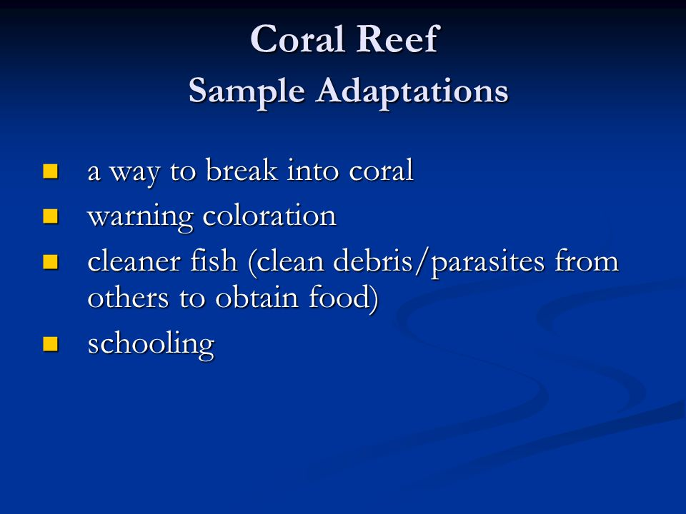 Coral Reef Sample Adaptations a way to break into coral a way to break into coral warning coloration warning coloration cleaner fish (clean debris/parasites from others to obtain food) cleaner fish (clean debris/parasites from others to obtain food) schooling schooling
