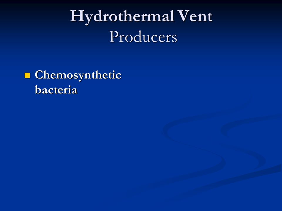 Hydrothermal Vent Producers Chemosynthetic bacteria Chemosynthetic bacteria