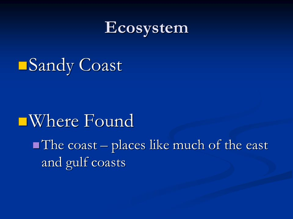 Ecosystem Sandy Coast Sandy Coast Where Found Where Found The coast – places like much of the east and gulf coasts The coast – places like much of the east and gulf coasts