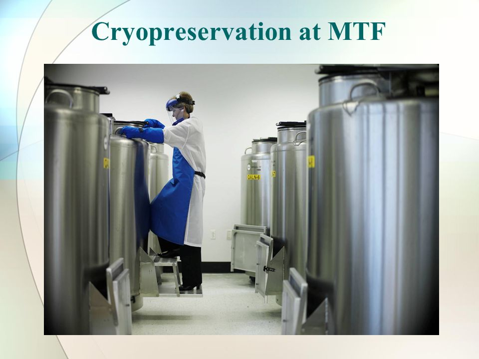 Cryopreservation at MTF