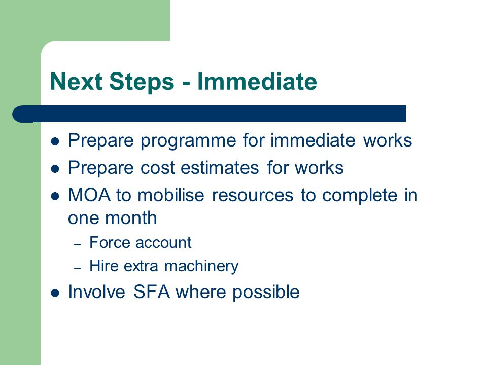 Next Steps - Immediate Prepare programme for immediate works Prepare cost estimates for works MOA to mobilise resources to complete in one month – Force account – Hire extra machinery Involve SFA where possible