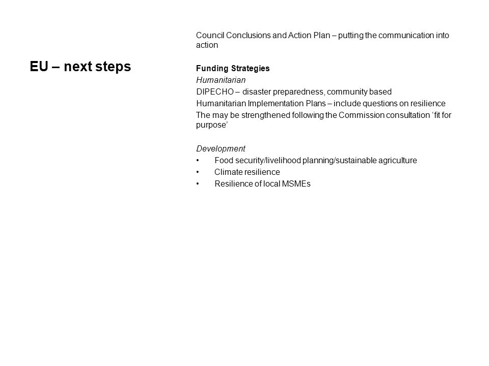 EU – next steps Council Conclusions and Action Plan – putting the communication into action Funding Strategies Humanitarian DIPECHO – disaster prepare