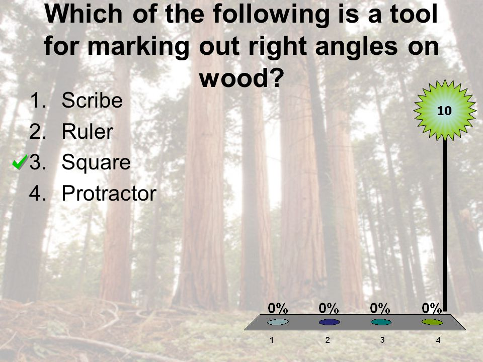 Which of the following is a tool for marking out right angles on wood.