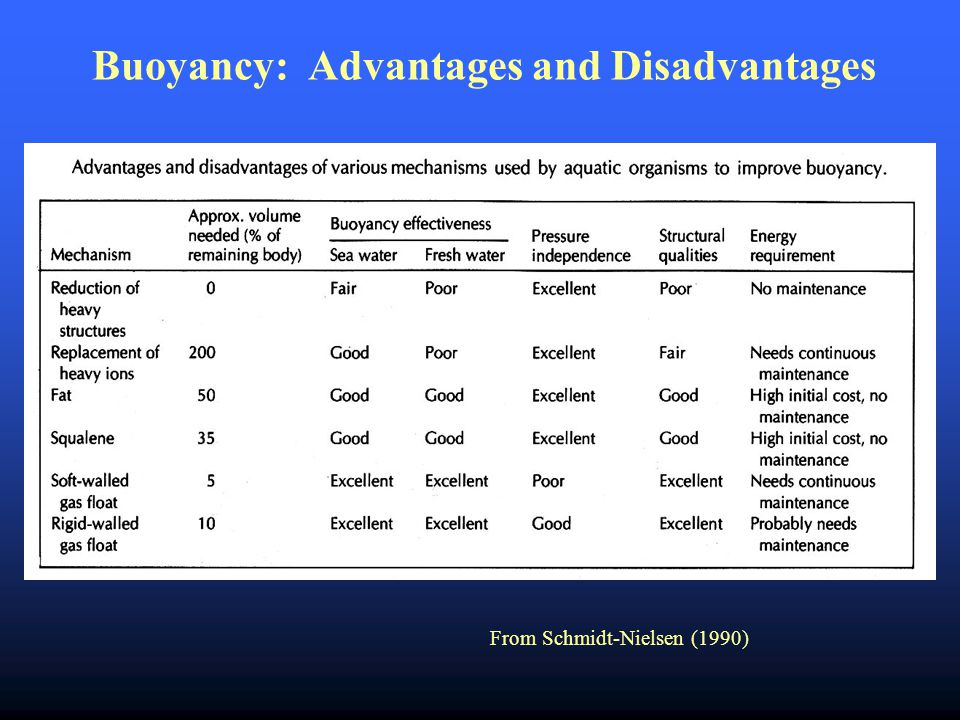 Buoyancy: Advantages and Disadvantages From Schmidt-Nielsen (1990)