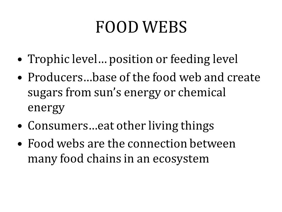 FOOD WEBS Trophic level… position or feeding level Producers…base of the food web and create sugars from sun's energy or chemical energy Consumers…eat other living things Food webs are the connection between many food chains in an ecosystem