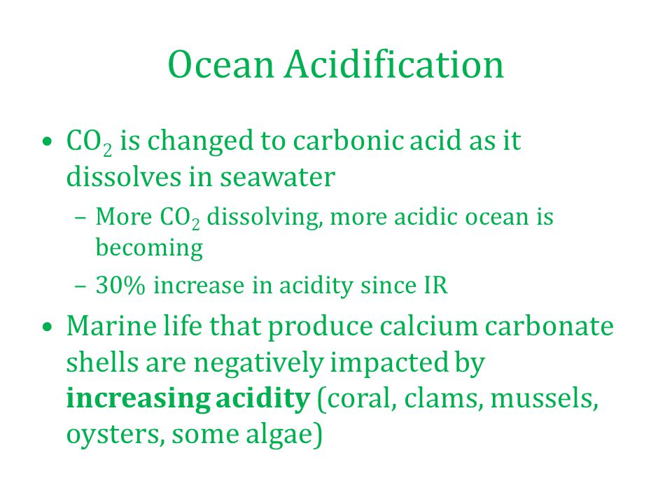 Ocean Acidification CO 2 is changed to carbonic acid as it dissolves in seawater –More CO 2 dissolving, more acidic ocean is becoming –30% increase in acidity since IR Marine life that produce calcium carbonate shells are negatively impacted by increasing acidity (coral, clams, mussels, oysters, some algae)