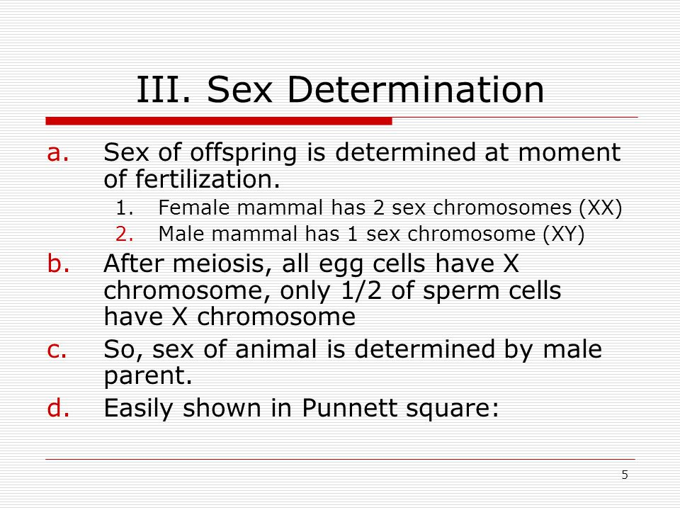 5 III.Sex Determination a.Sex of offspring is determined at moment of fertilization.