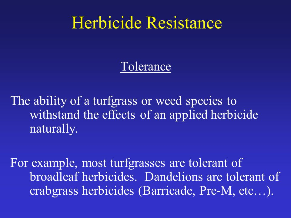 Herbicide Resistance Tolerance The ability of a turfgrass or weed species to withstand the effects of an applied herbicide naturally.