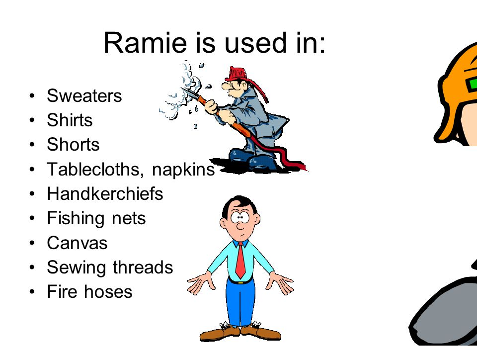 Ramie is used in: Sweaters Shirts Shorts Tablecloths, napkins Handkerchiefs Fishing nets Canvas Sewing threads Fire hoses