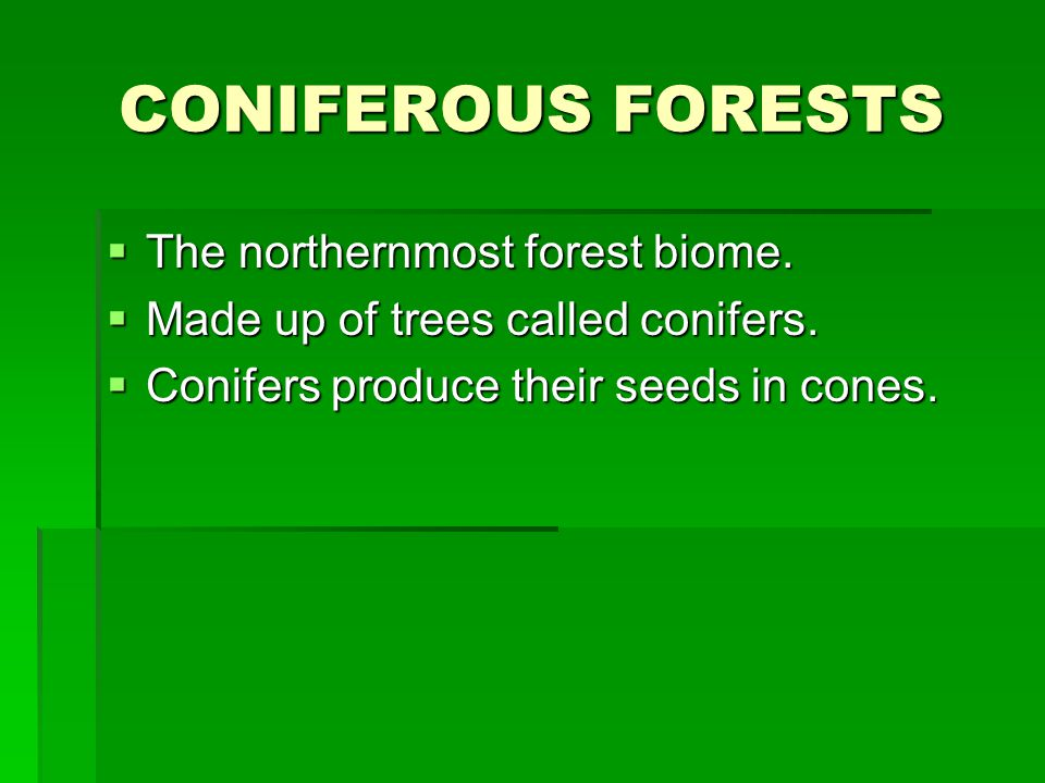 CONIFEROUS FORESTS  The northernmost forest biome.
