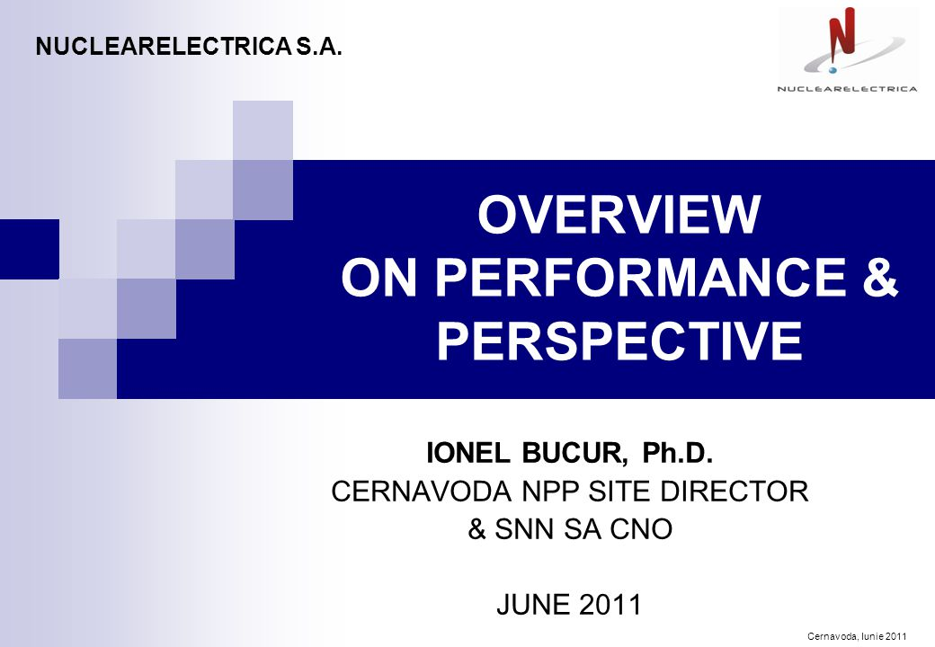 Cernavoda, Iunie 2011 OVERVIEW ON PERFORMANCE & PERSPECTIVE IONEL BUCUR, Ph.D.