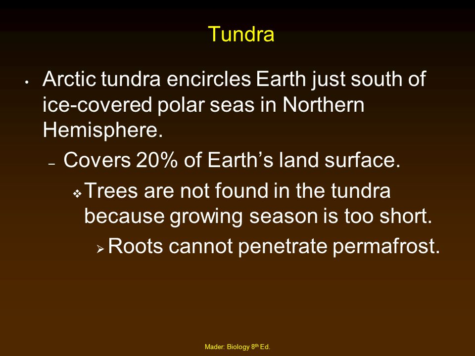 Mader: Biology 8 th Ed. Tundra Arctic tundra encircles Earth just south of ice-covered polar seas in Northern Hemisphere. – Covers 20% of Earth's land
