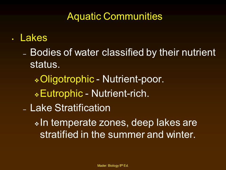 Mader: Biology 8 th Ed. Aquatic Communities Lakes – Bodies of water classified by their nutrient status.  Oligotrophic - Nutrient-poor.  Eutrophic -