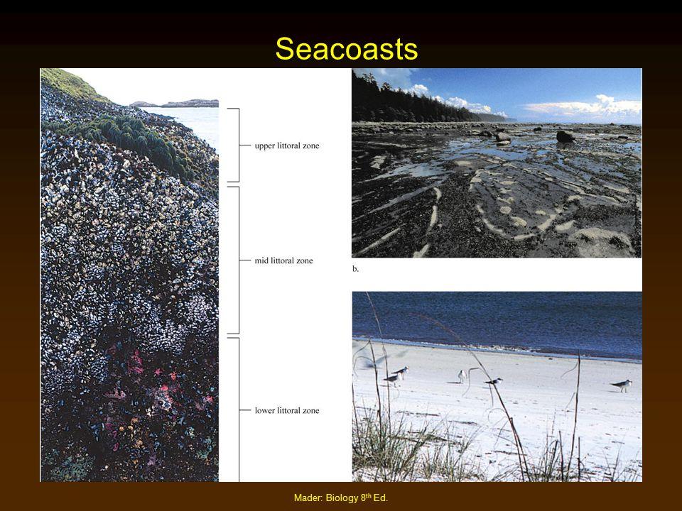 Mader: Biology 8 th Ed. Seacoasts