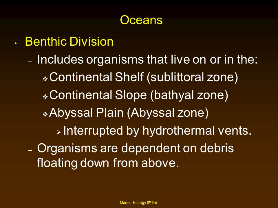 Oceans Benthic Division – Includes organisms that live on or in the:  Continental Shelf (sublittoral zone)  Continental Slope (bathyal zone)  Abyss