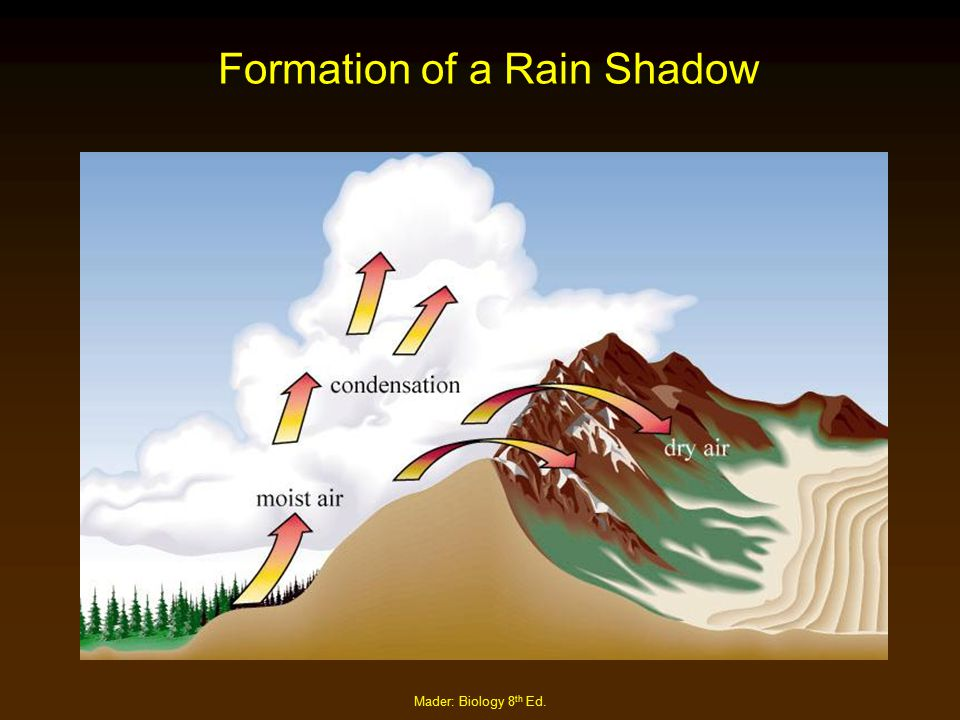 Mader: Biology 8 th Ed. Formation of a Rain Shadow