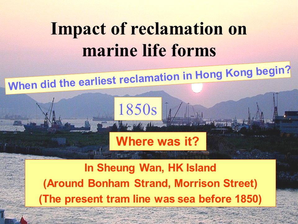 Impact of reclamation on marine life forms When did the earliest reclamation in Hong Kong begin.