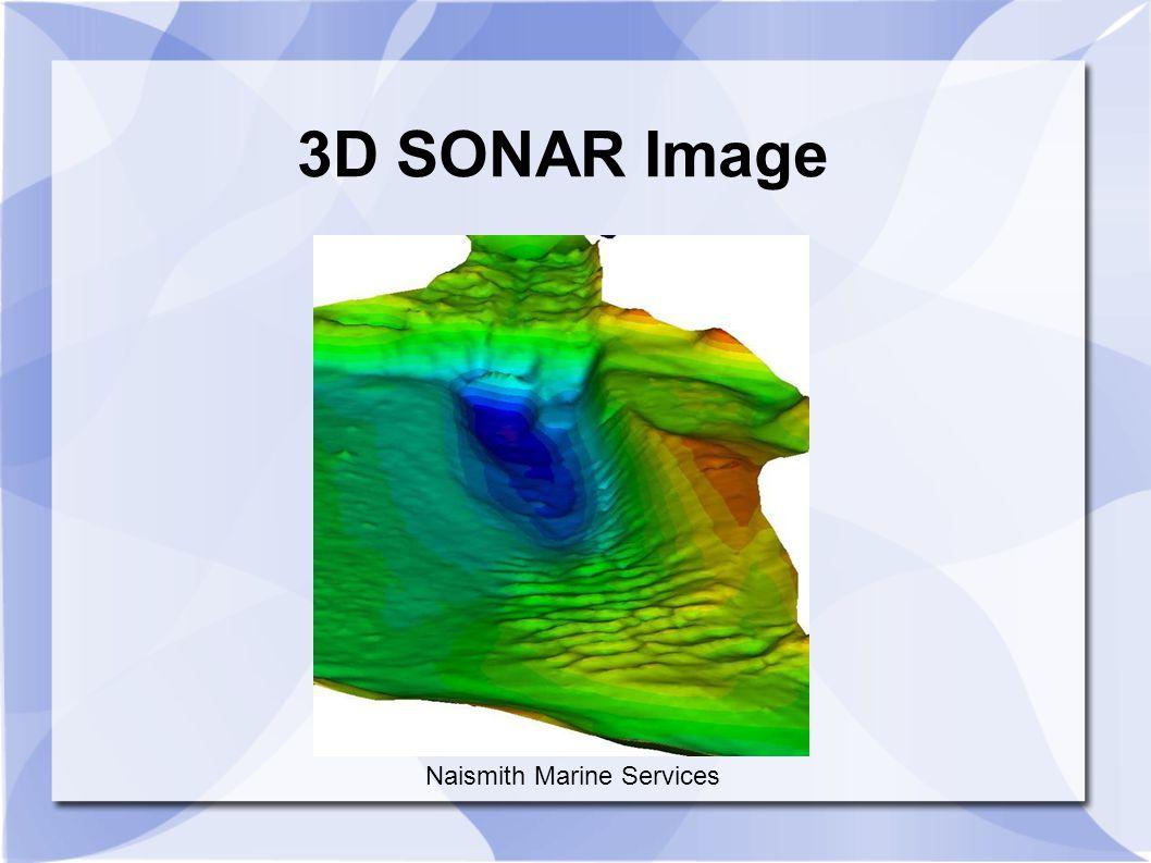 3D SONAR Image Naismith Marine Services