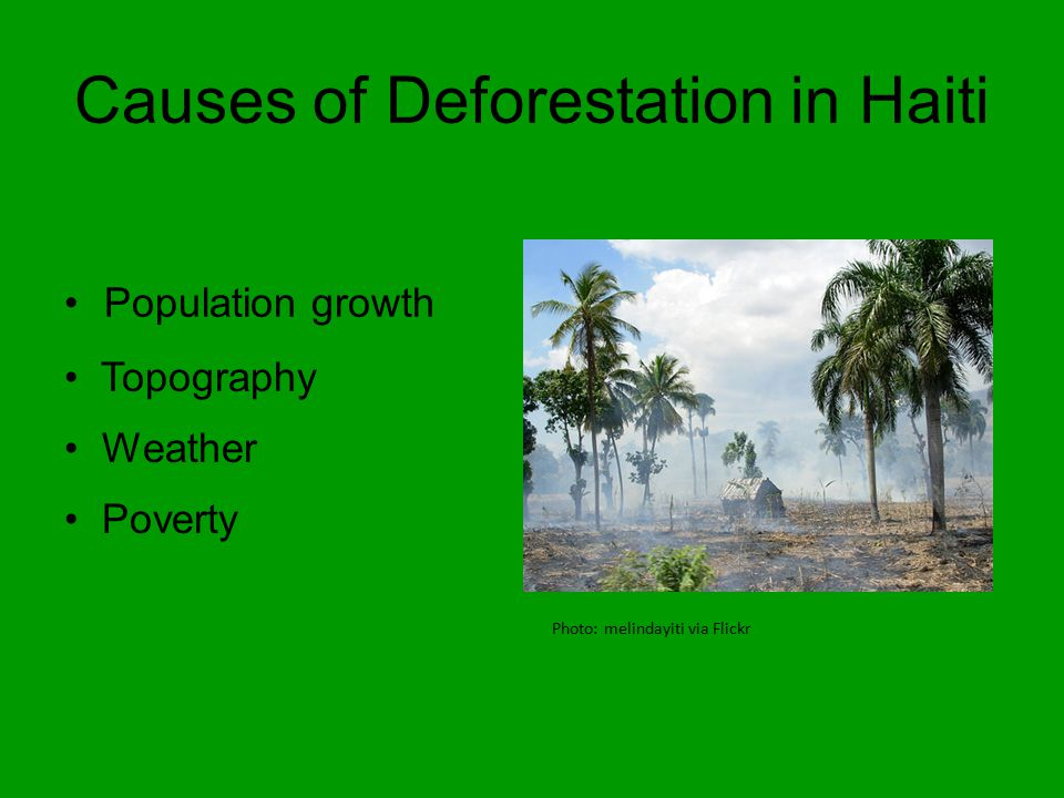 Causes of Deforestation in Haiti Population growth Photo: melindayiti via Flickr Topography Weather Poverty