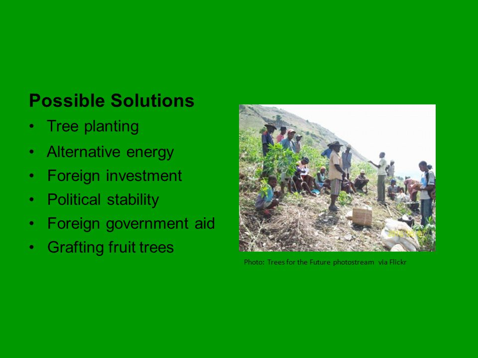 Possible Solutions Tree planting Photo: Trees for the Future photostream via Flickr Alternative energy Foreign investment Political stability Foreign government aid Grafting fruit trees