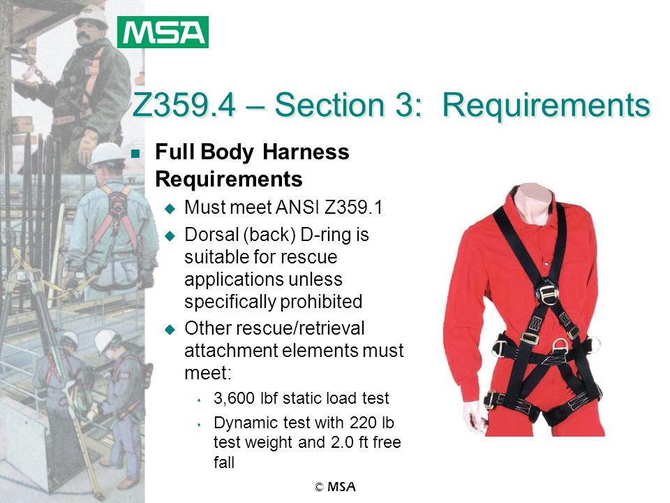 © MSA Z359.4 – Section 3: Requirements n Full Body Harness Requirements u Must meet ANSI Z359.1 u Dorsal (back) D-ring is suitable for rescue applicat