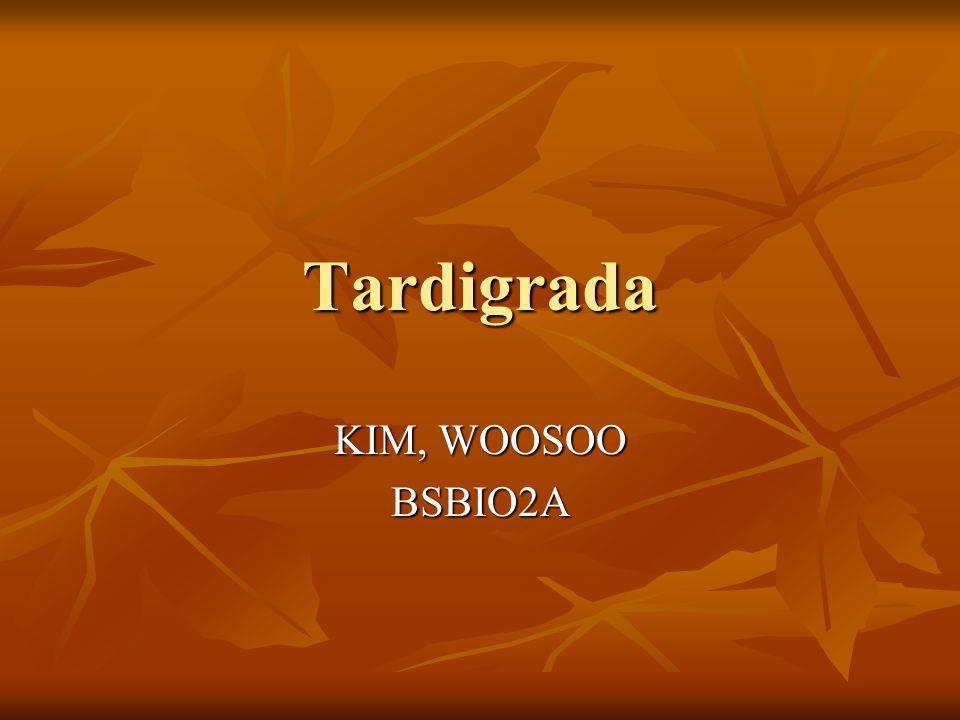Tardigrada KIM, WOOSOO BSBIO2A