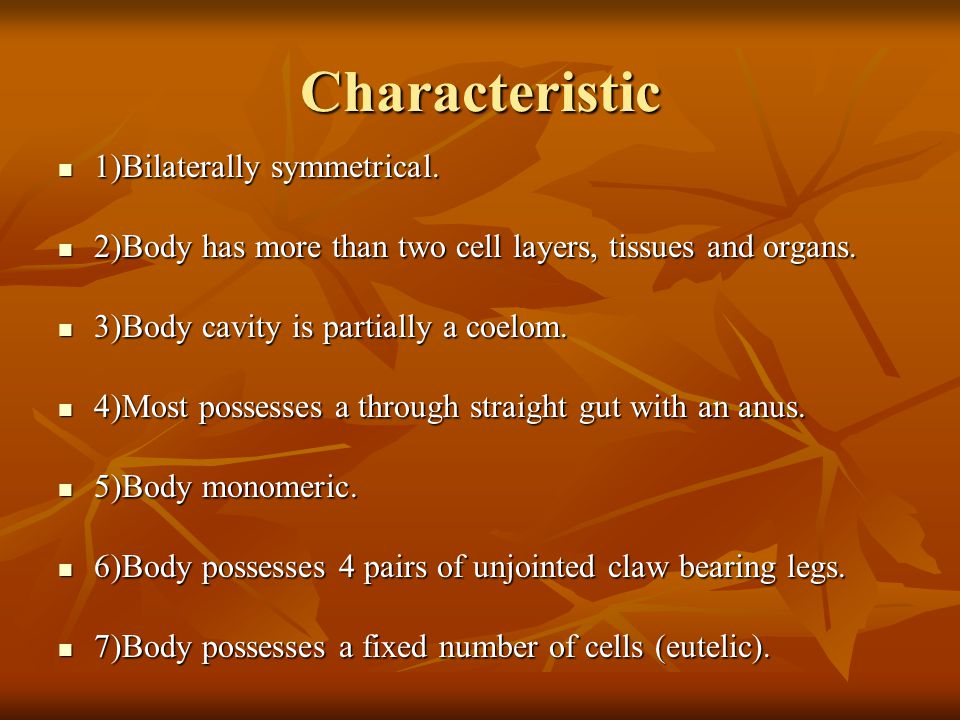 Characteristic 1)Bilaterally symmetrical. 1)Bilaterally symmetrical.