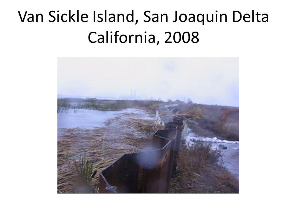 Van Sickle Island, San Joaquin Delta California, 2008