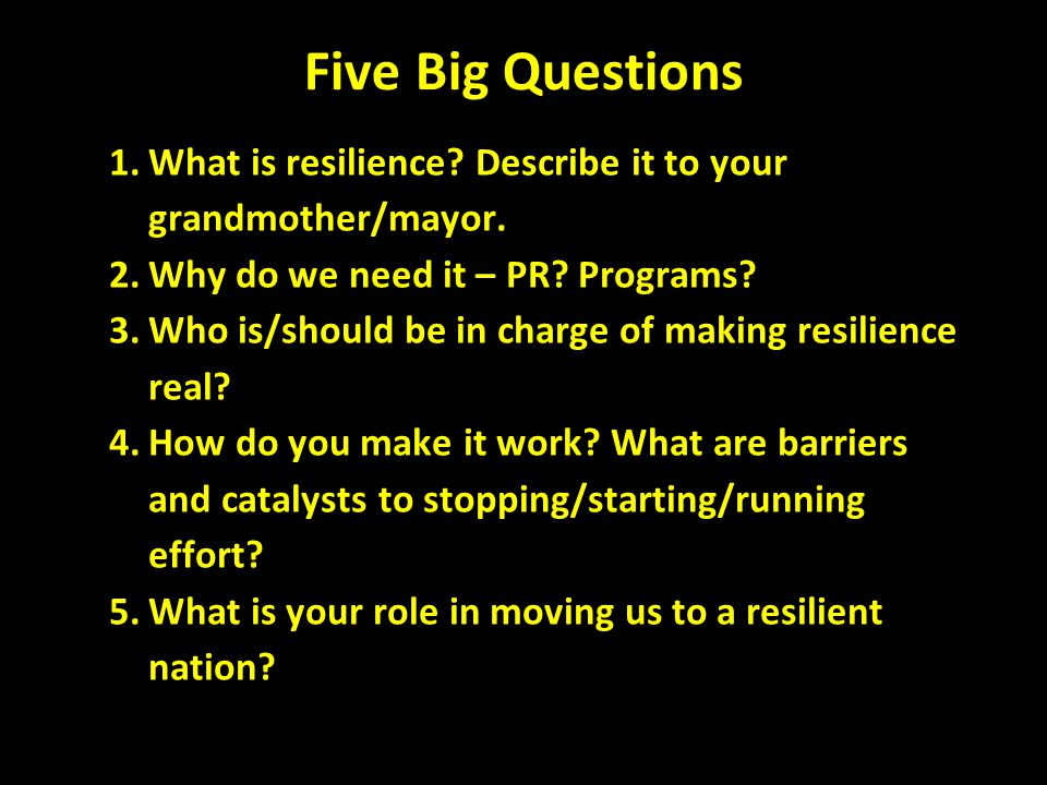 Five Big Questions 1.What is resilience. Describe it to your grandmother/mayor.