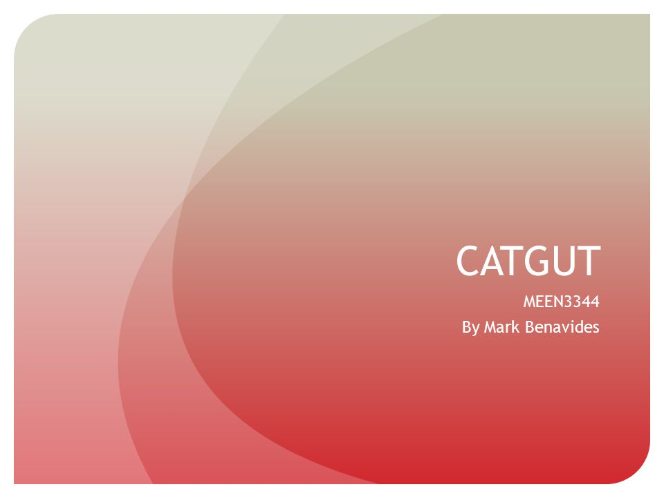 CATGUT MEEN3344 By Mark Benavides