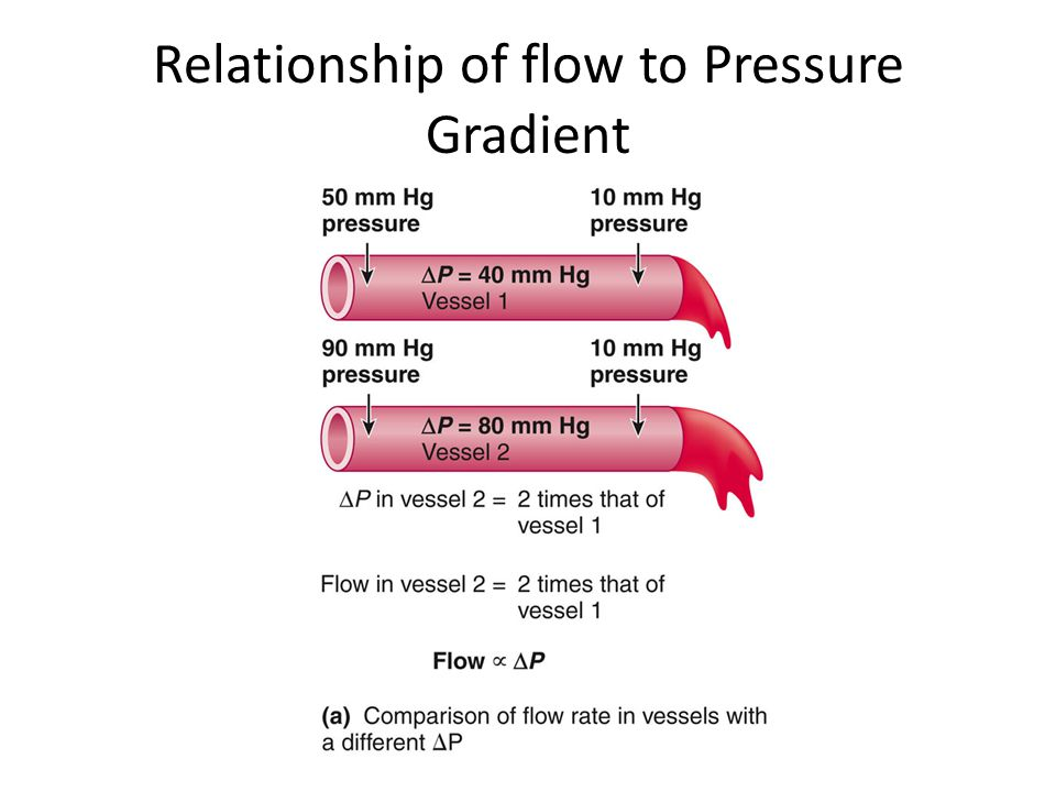 Relationship of flow to Pressure Gradient