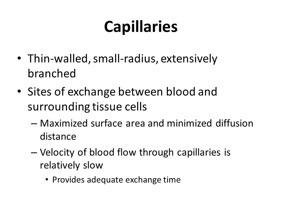 Capillaries Thin-walled, small-radius, extensively branched Sites of exchange between blood and surrounding tissue cells – Maximized surface area and