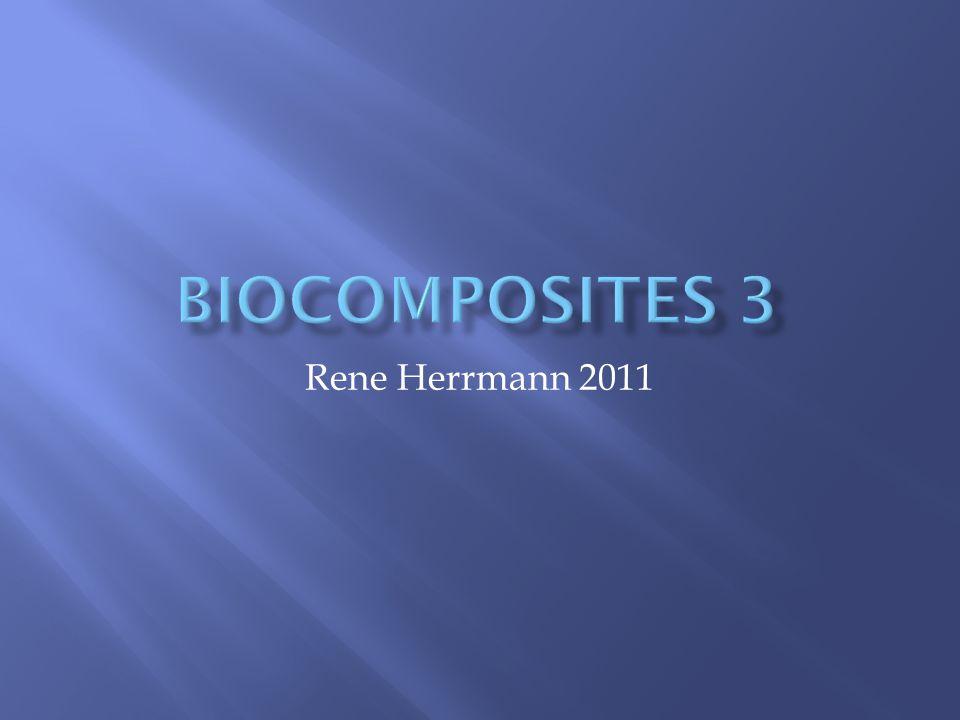Rene Herrmann 2011