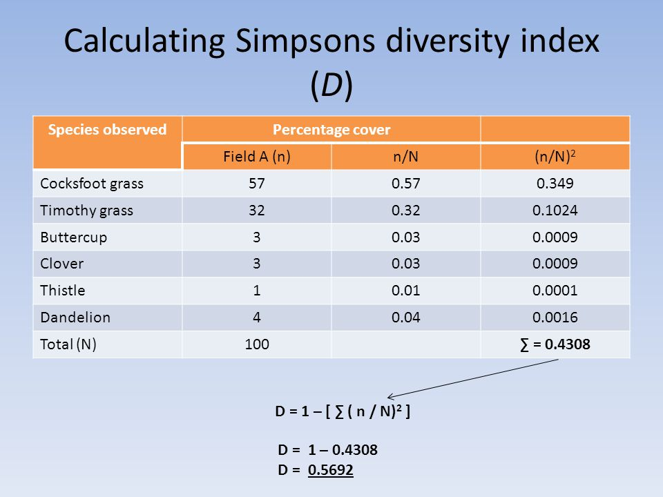 Calculating Simpsons diversity index (D) Species observedPercentage cover Field A (n)n/N(n/N) 2 Cocksfoot grass570.570.349 Timothy grass320.320.1024 Buttercup30.030.0009 Clover30.030.0009 Thistle10.010.0001 Dandelion40.040.0016 Total (N)100∑ = 0.4308 D = 1 – [ ∑ ( n / N) 2 ] D = 1 – 0.4308 D = 0.5692