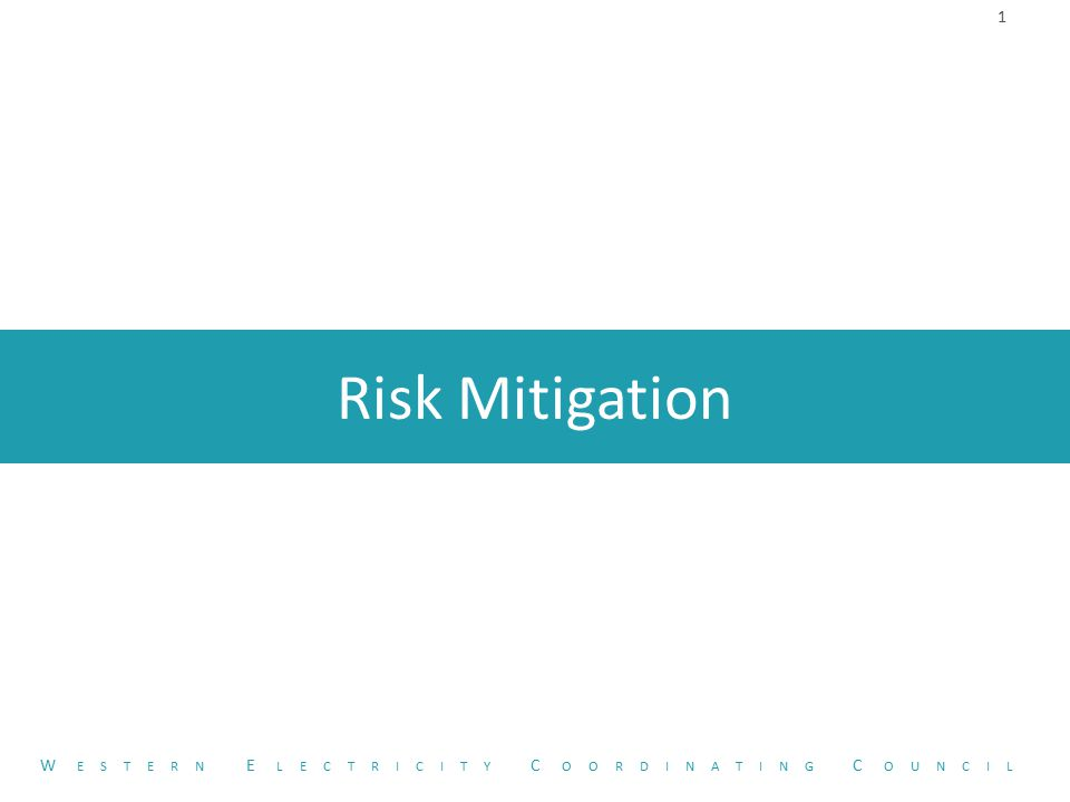 Risk Mitigation 1 W ESTERN E LECTRICITY C OORDINATING C OUNCIL