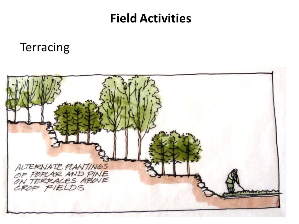 Field Activities Terracing