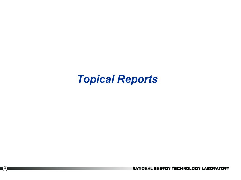 3 Topical Reports