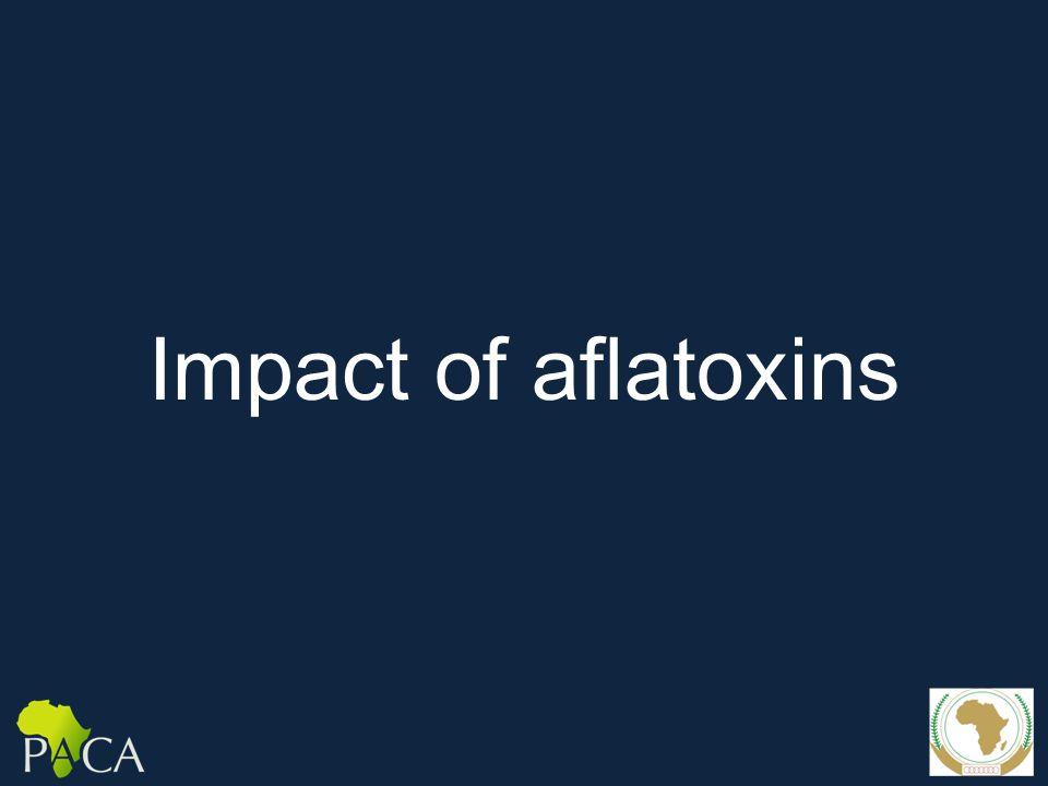 Impact of aflatoxins