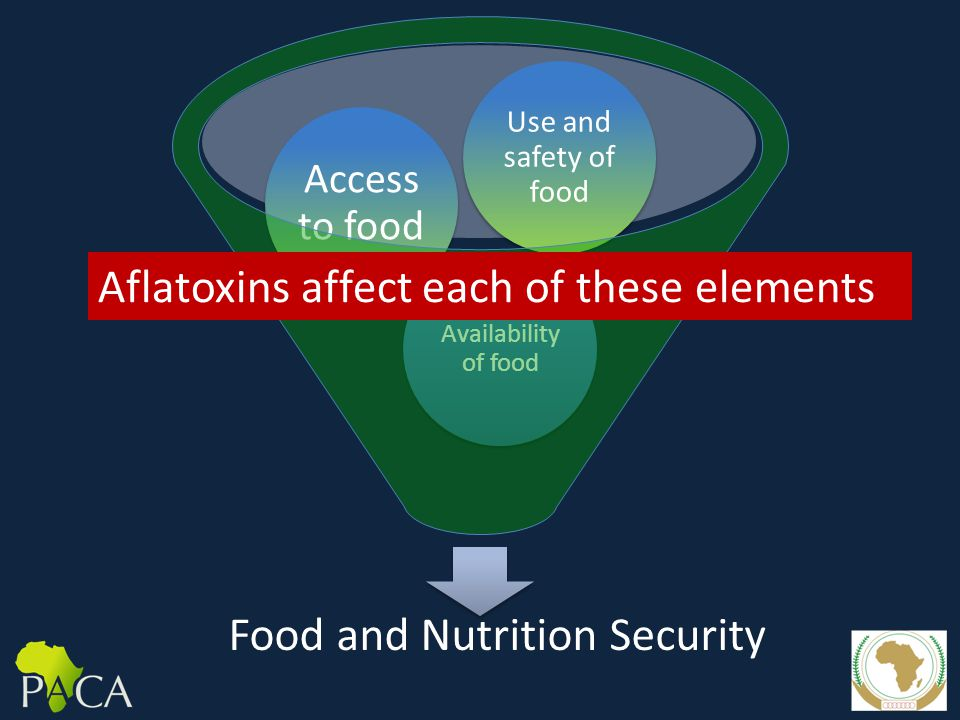 Food and Nutrition Security Availability of food Access to food Use and safety of food Aflatoxins affect each of these elements