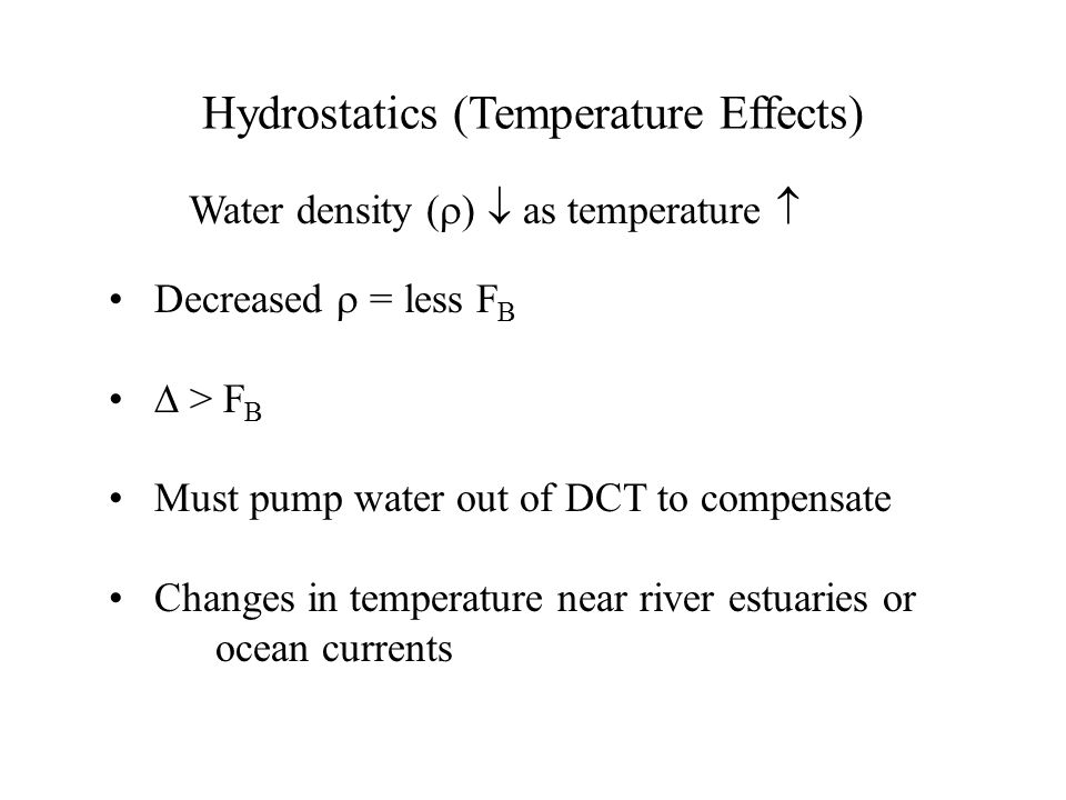 Hydrostatics (Temperature Effects) Decreased  = less F B ∆ > F B Must pump water out of DCT to compensate Changes in temperature near river estuaries