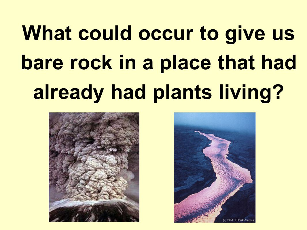 What could occur to give us bare rock in a place that had already had plants living?