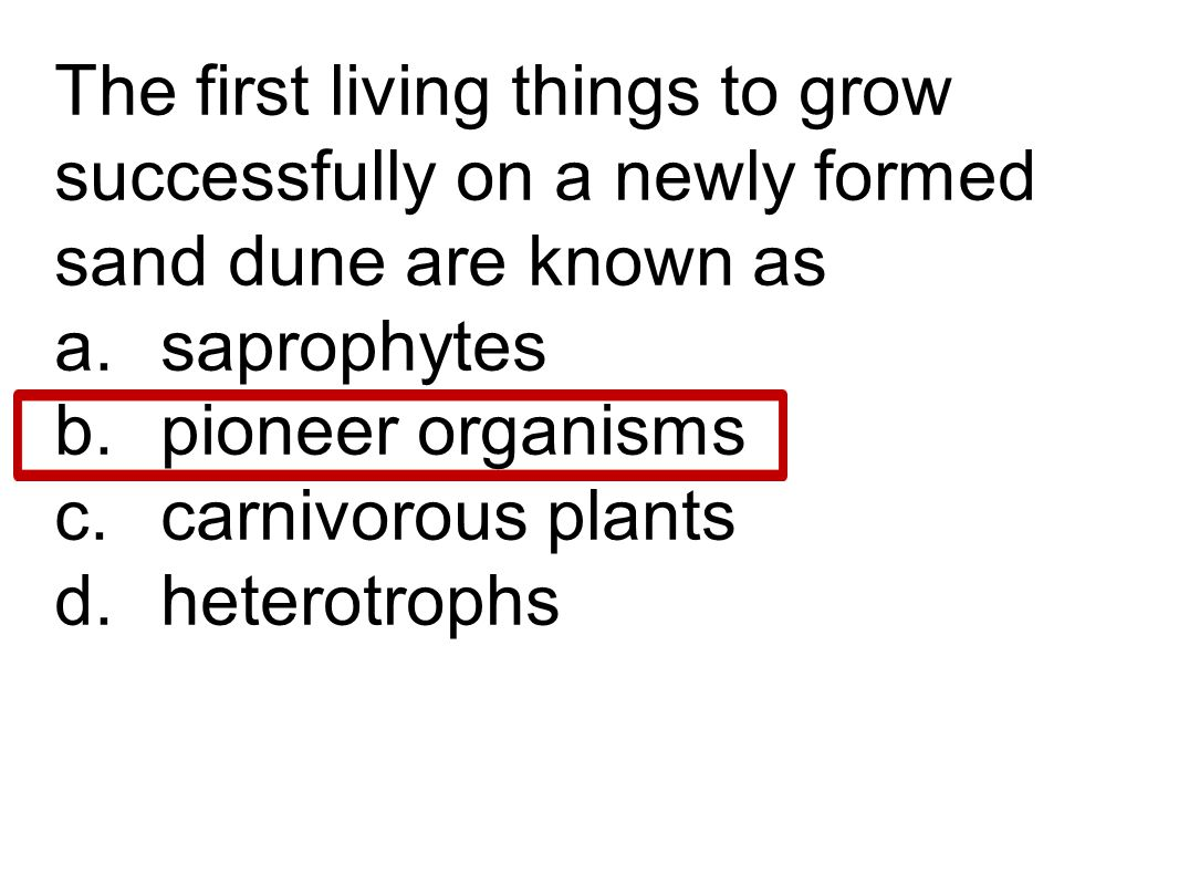 The first living things to grow successfully on a newly formed sand dune are known as a. saprophytes b. pioneer organisms c. carnivorous plants d. het