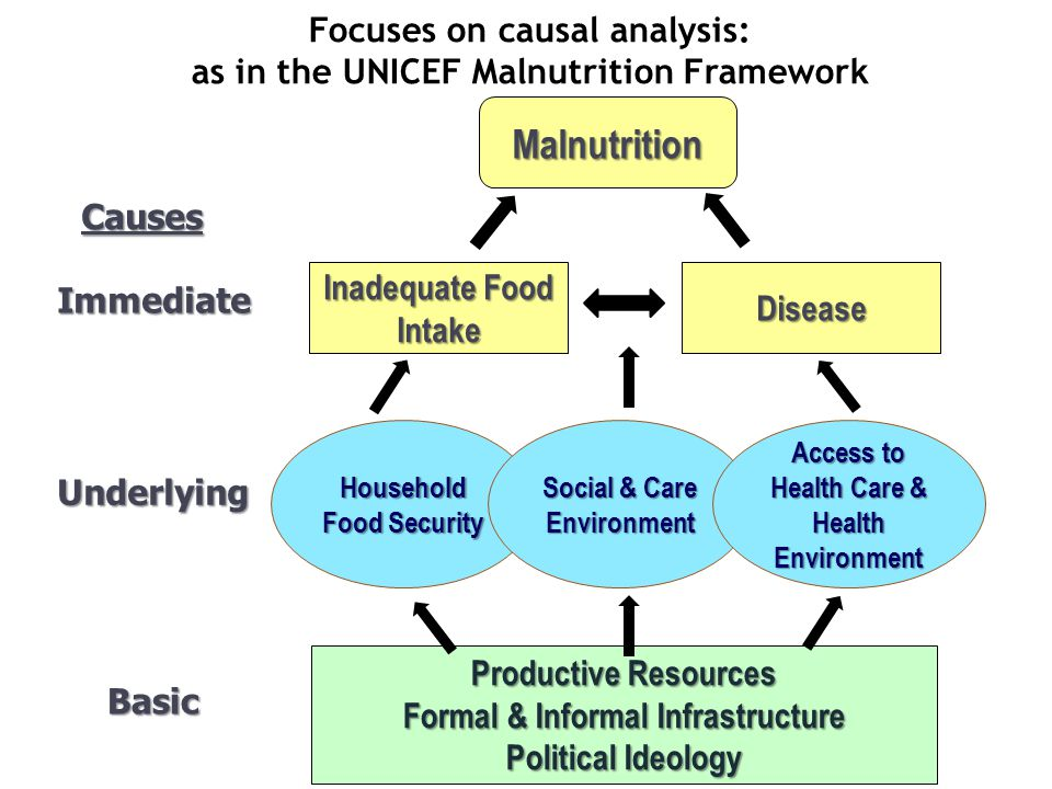Productive Resources Formal & Informal Infrastructure Political Ideology Immediate Underlying Basic Malnutrition Inadequate Food Intake Disease Househ