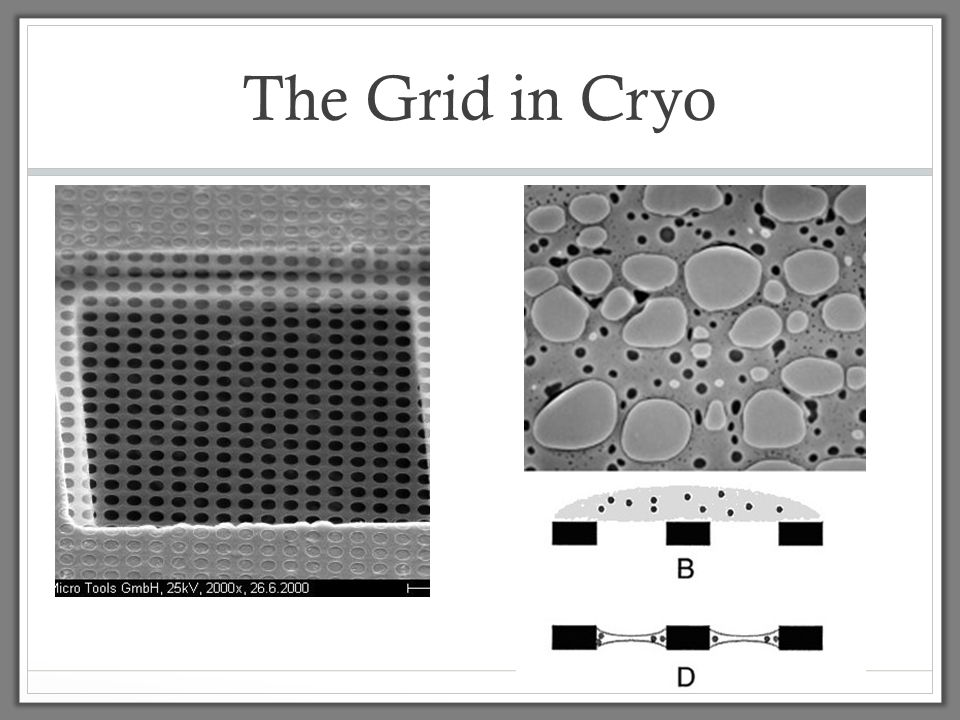 The Grid in Cryo