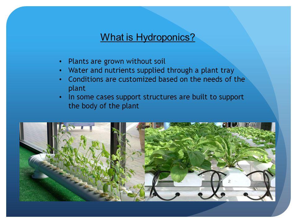 What is Hydroponics.